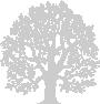 tree-watermark